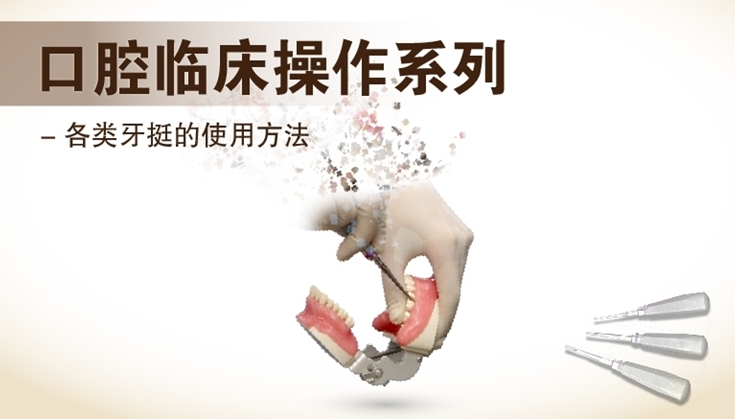 图片 各类牙挺的使用方法