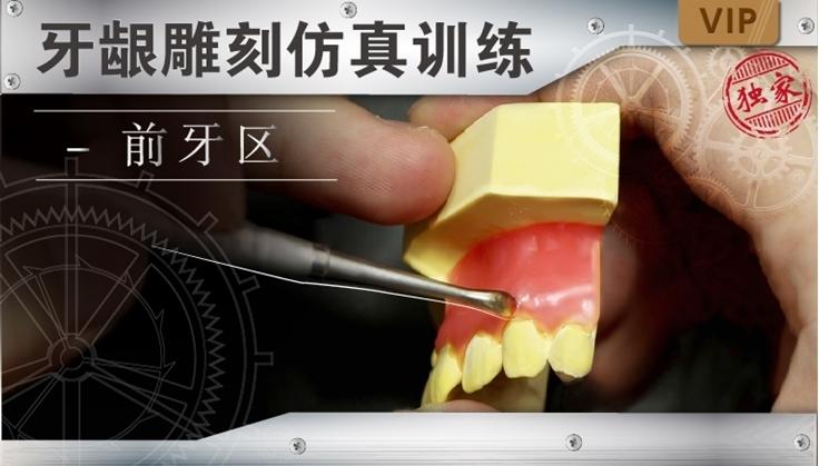 图片 牙龈雕刻仿真训练-前牙区