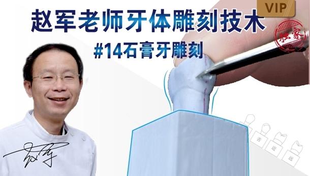 图片 牙体雕刻技术 #14石膏牙雕刻