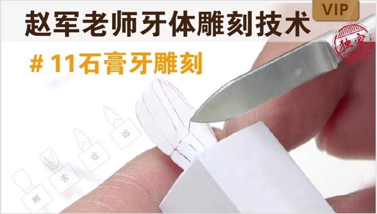图片 牙体雕刻技术 #11石膏牙雕刻